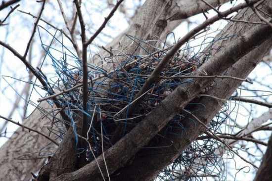 coat-hanger-nest2-550x366