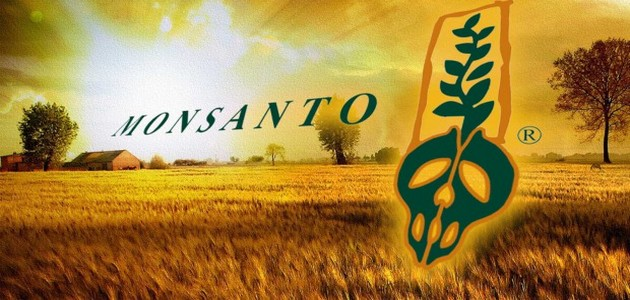 Monsanto-condamné