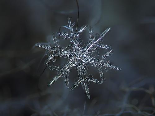 ob_68c113_flocon-de-neige