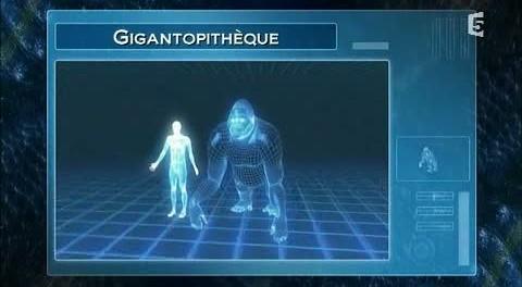 Gigantopitheque-480x264