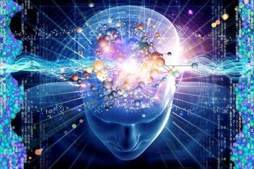méditation-cerveau