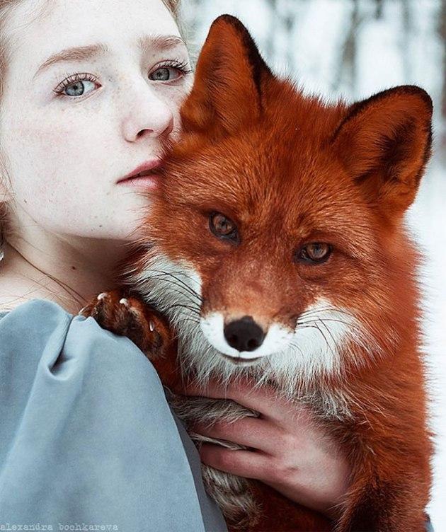 fox1-2
