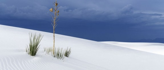 desert-white-sands-1